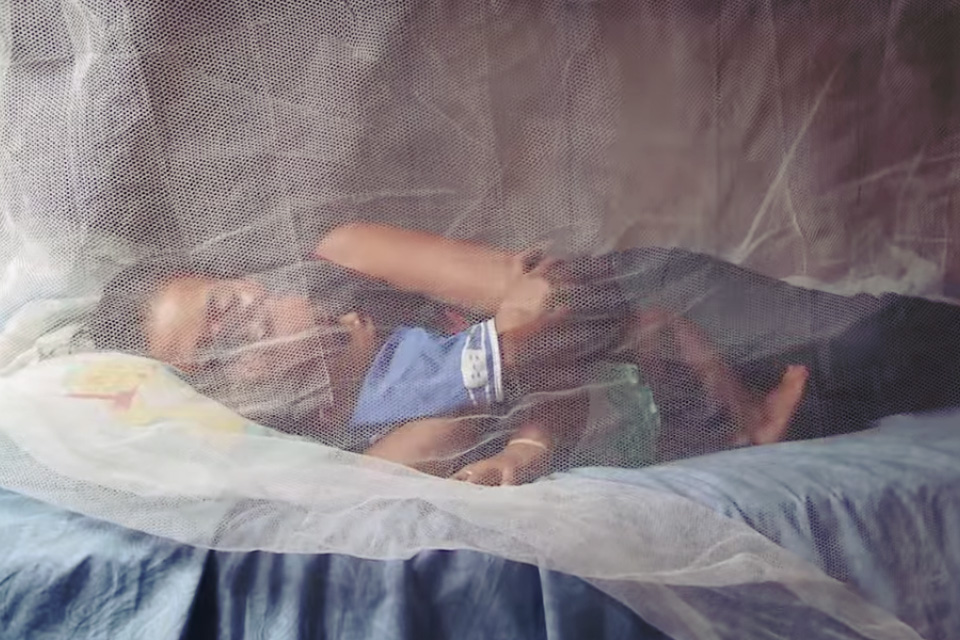 Resultado de imagem para luta contra paludismo e são tomé e príncipe