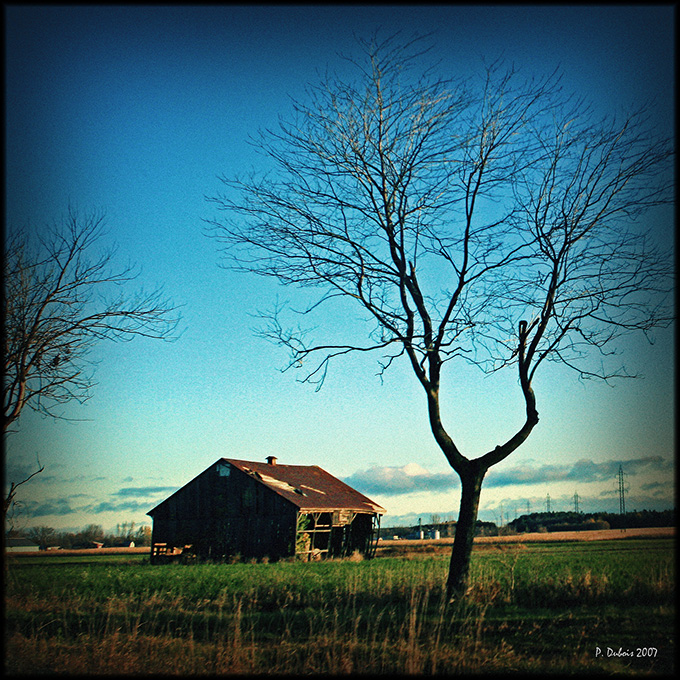 lomo_landscape_by_phil34