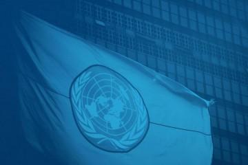 (Imagem: Divulgação ONU)