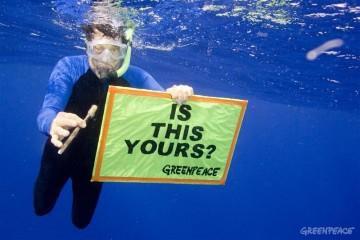 (Imagem: Greenpeace)