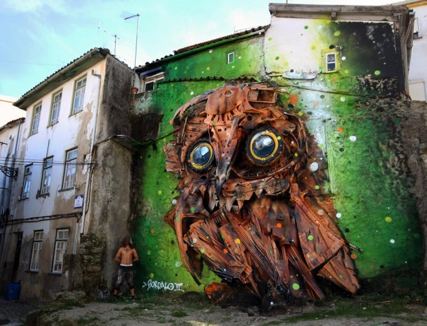 Owl-Eyes-in-Covilhã-Portugal