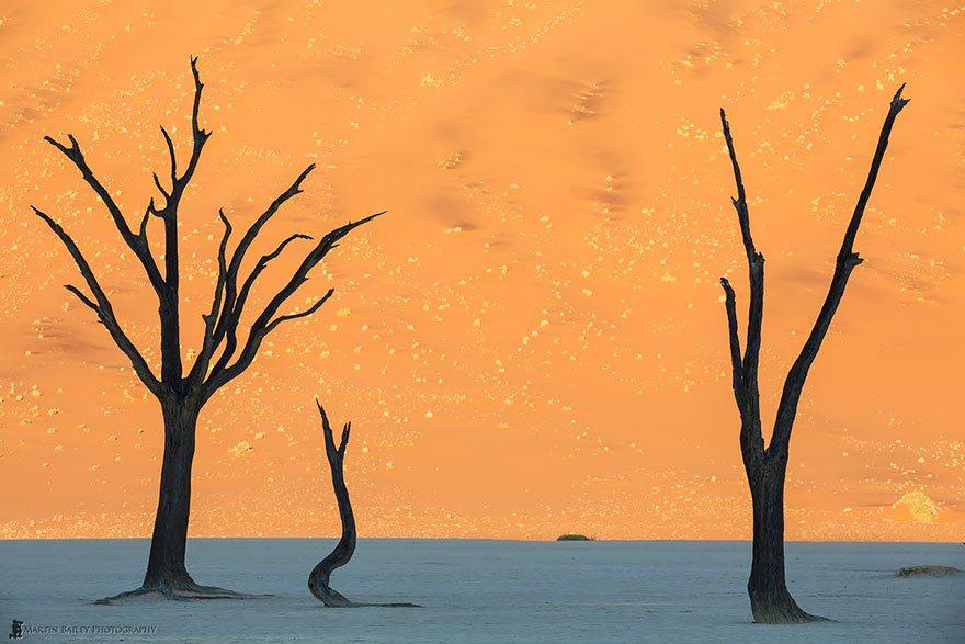 deserto de Namid