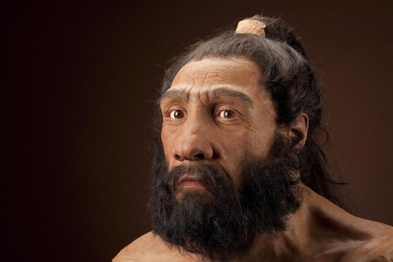 Representação de um neandertal europeu (Imagem: Divulgação Universidade de Edimburgo)