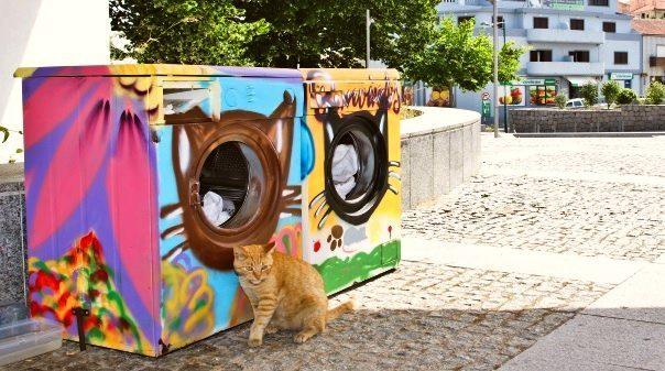 """d893570b6 Projeto """"Aqui há gato"""" transforma máquinas de lavar roupa em abrigos ..."""